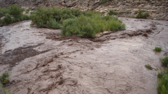 NWS issues Flash flood warning for Washington and Kane counties