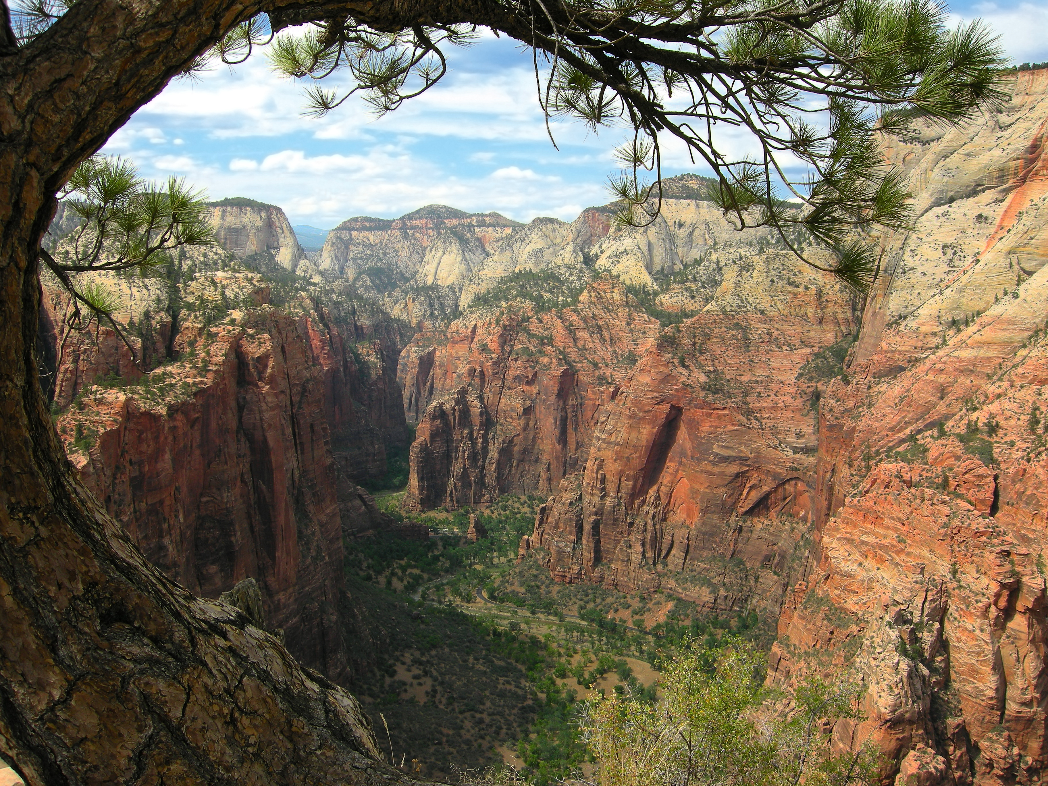 national arch hiking the in oliver park zion shea double cabins alcove to