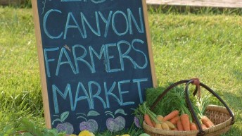 Zion Canyon Farmers Market 2015 season comes to an end