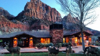 Zion Canyon Village is 2016 Tour of Utah host